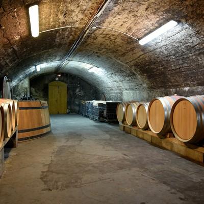 Domaine Moulin-Tacussel - La Cave